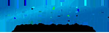 5e7928fc8357a1c7c7721794_Noridian_logo